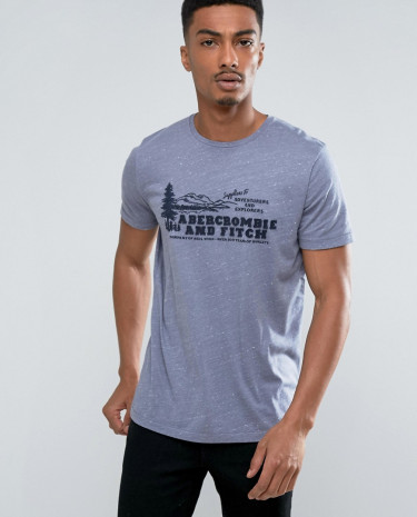 Fashion Shop - Abercrombie & Fitch Slim Fit T-Shirt with Logo in Blue - Blue